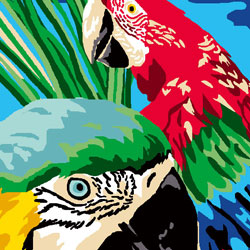 kit-canevas-25-30-perroquets-maison-et-cadeaux