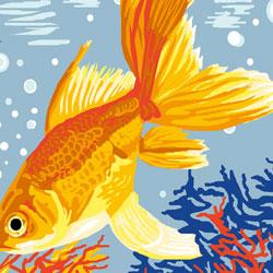 kit-canevas-25-30-poisson-exotique-maison-et-cadeaux